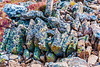 Colorful mountain rocks
