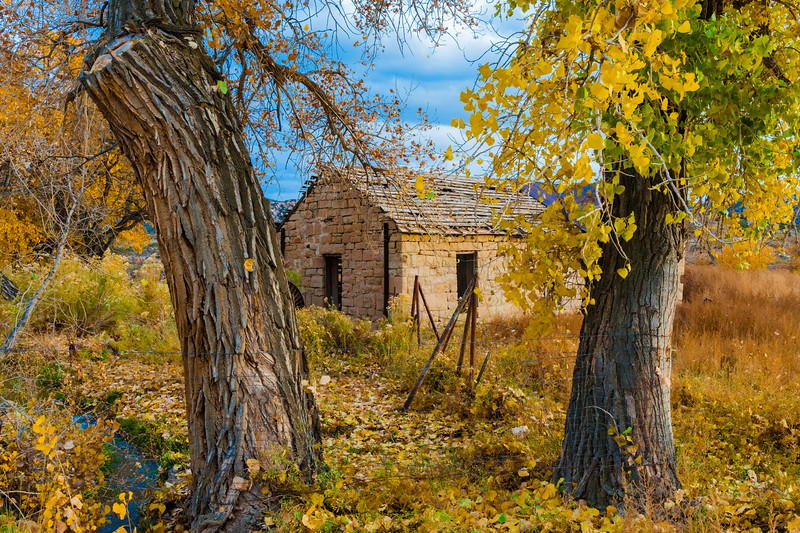 Farm building framed by trees in Fall