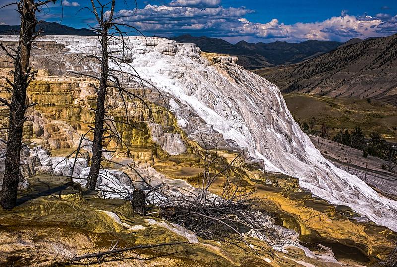 Mammoth Hot Springs, Yellowstone, Wyoming