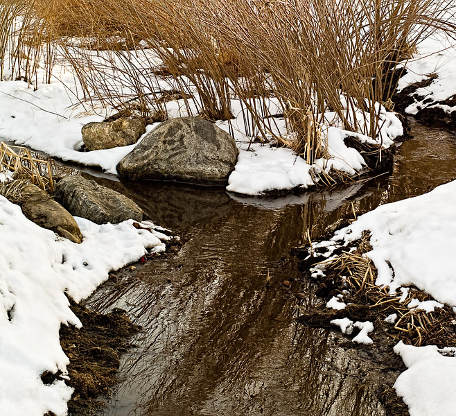 Goose Creek: Near Iris Underpass