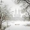 Winter - Central Park- Through Winter Trees - New York City