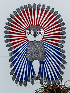 Vibrant Young Owl