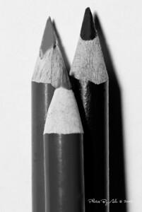 Crayon macro - b&w - Ade O.