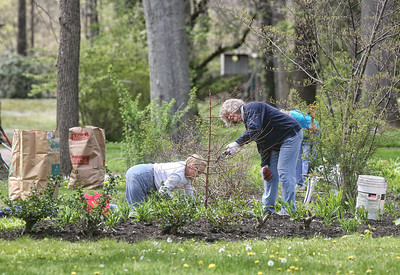 From left, Lynda Helyo, Janet Bird, and in the back Earleen Helman clean and prune grounds at the Hickories on Washington Avenue. BRUCE BISHOP/CHRONICLE
