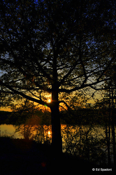 Sun sets at Buckmaster Pond (2)