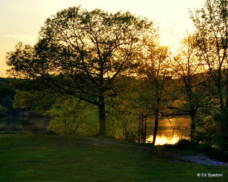 Sun sets at Buckmaster Pond