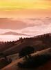 Santa Cruz Mtns At Sunset v2