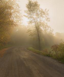 Sunbeams and Fog