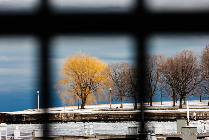 Icy Lake #17