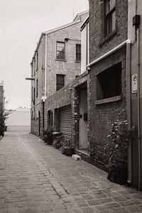 Phoenix Lane
