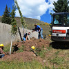Planting NewTrees in Vail Colorado
