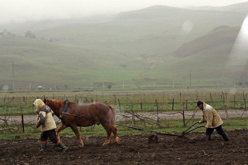 Sowing the earth. (North Ossetia, Russia)