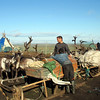Taking a break while packing up their sled on the tundra. (Nenets Autonomous District, Russia)