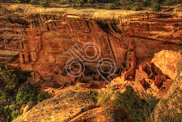 Mesa Verde 2011