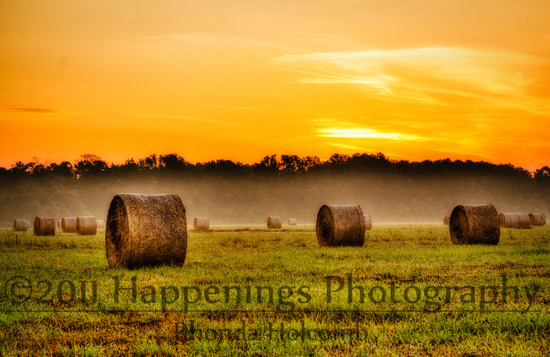 Make Hay by Rhonda Holcomb<br /> taken in Alvin Texas