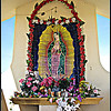 Detail, Shrine to Our Lady of Guadalupe <br />  Located directly on the Tropic of Cancer.