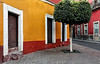 Guanajuato (15)