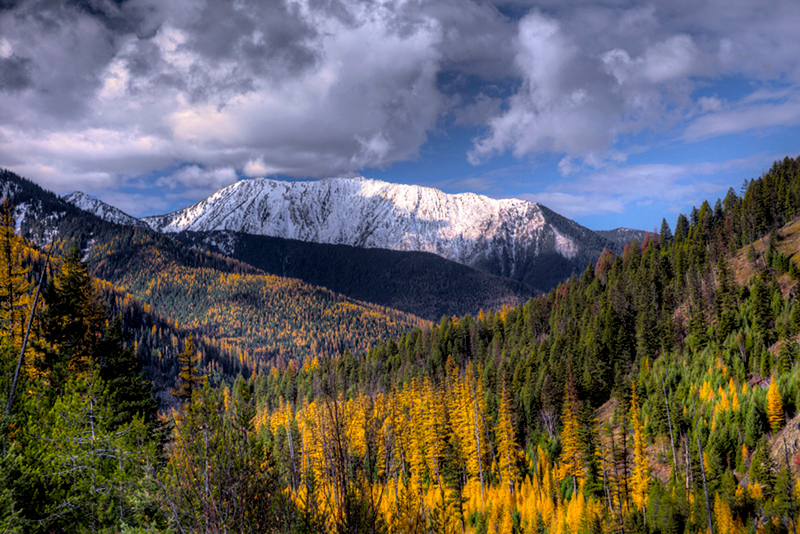 Montana - Near the Continental Divide