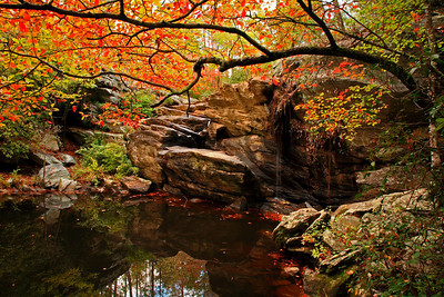 Cheaha Fall