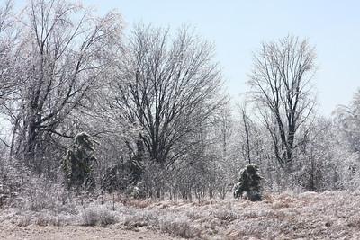 Frozen everything.