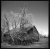 0409_roadtrip_120mm-27