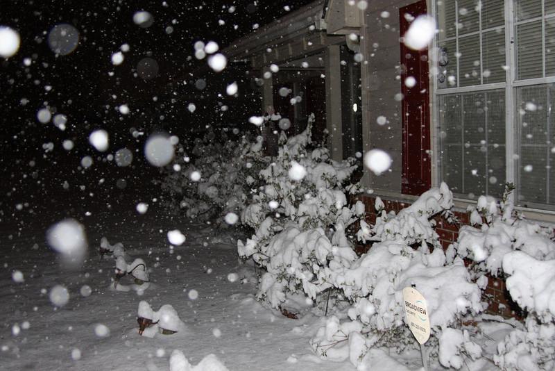 Snow before dawn, Desoto County 2/8/10
