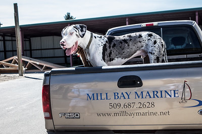 Mill Bay Marine