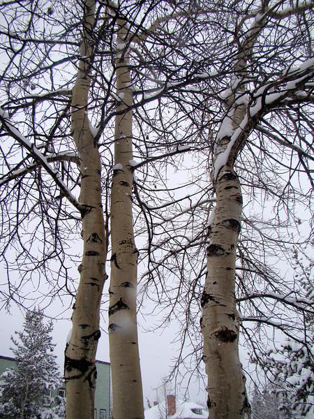 Colorado Breckenridge (3)