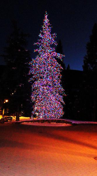 Christmas Tree in Vail Colorado