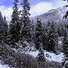 Colorado Independence Pass (4)