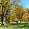 Fall Colors in Washington Park in Denver