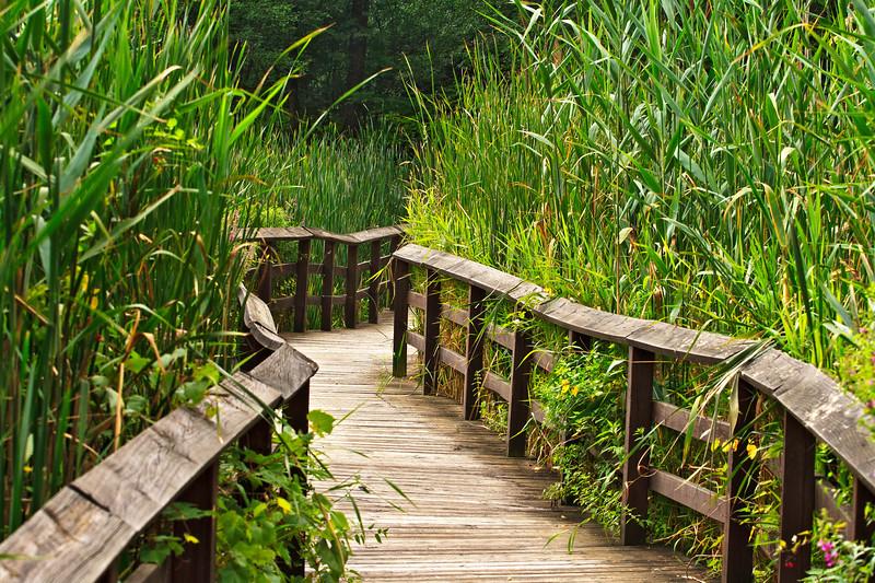Tinker Park Trail in Henrietta, N.Y.