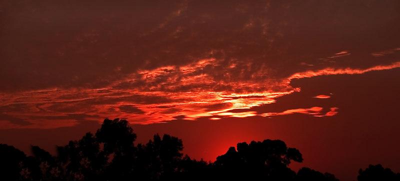 Sunset3904