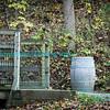 Autumn_2012-3898