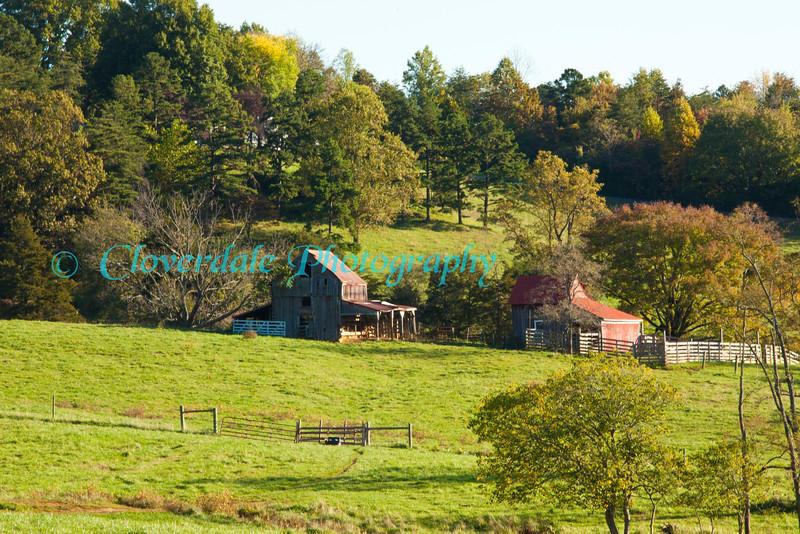 Farm Colony_10-15-2011IMG_2231