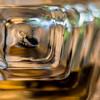 The bottom view of Tresor L'Eau de Parfum by Lancome for Women Eau de Parfum Spray.