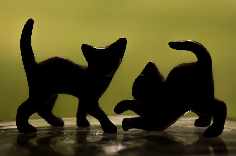 Wanna Play?<br /> This is a silhouette of two tiny glass kitten figurines from my husband's collection when he was a kid.