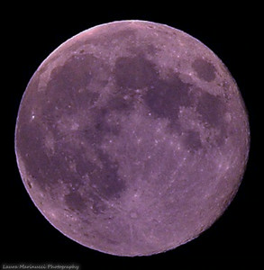 Full Moon-Known as a  Blue Moon this month