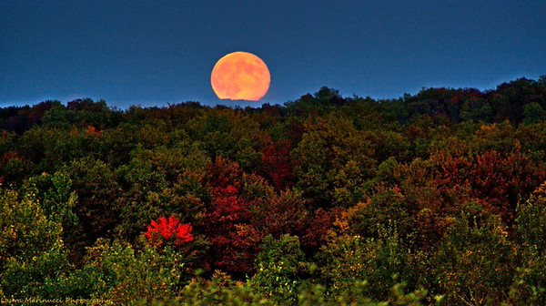 Fall Harvest Full Moon