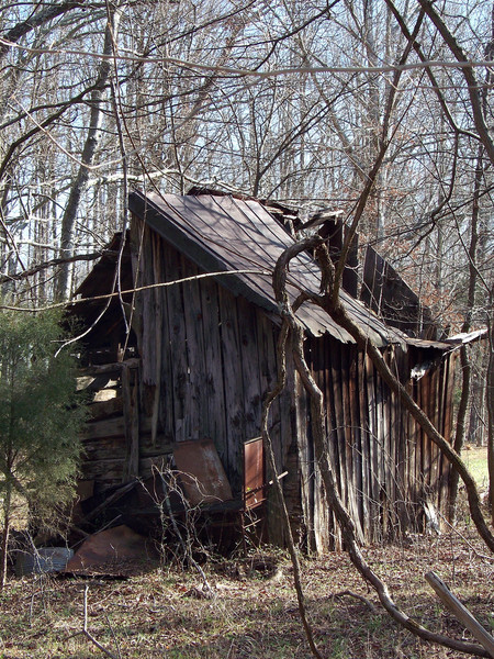 Shed behind old abandoned farmhouse.