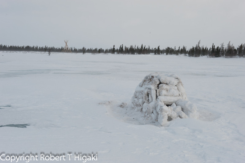 Norman built this igloo.