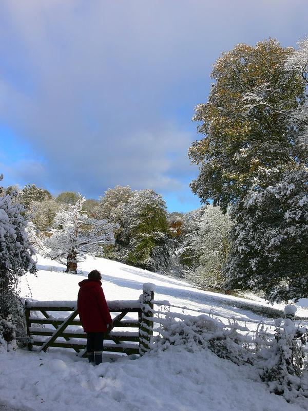 Aisholt snow 042