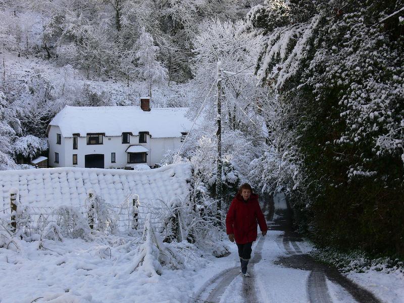 Aisholt snow 036