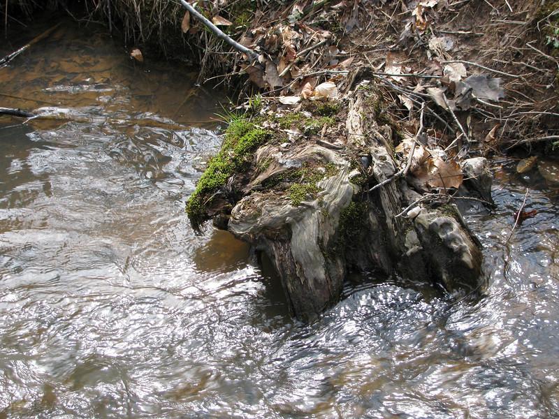 My Favorite Shot Of The Creek