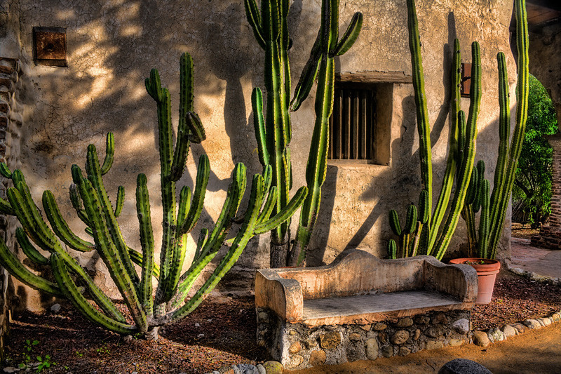 Bench and Cactus - Mission San Juan Capistrano, California