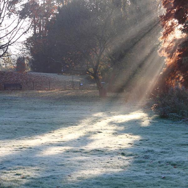 Winter Light II