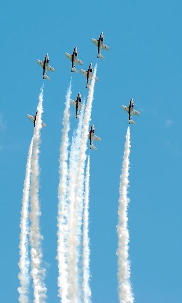 2009 Trenton Air Show - Snowbirds