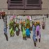 In front of a window in Viterbo (IT)