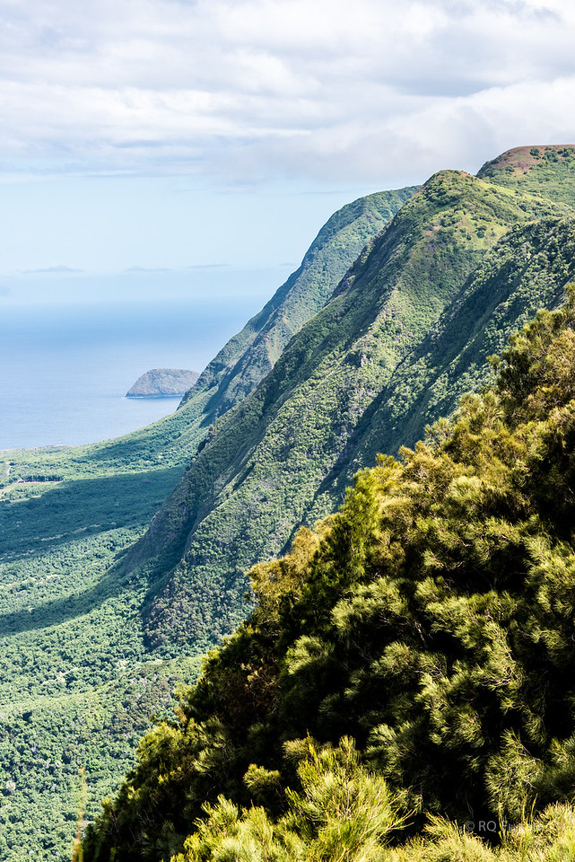 Sea cliffs above Kalaupapa