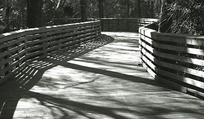 Boardwalk bw